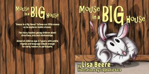 Mouse in a big house