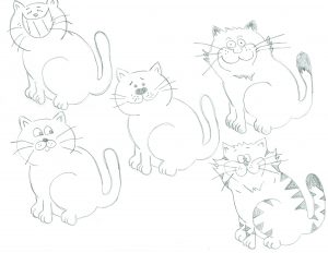 Some of the cats that were under consideration for this project.
